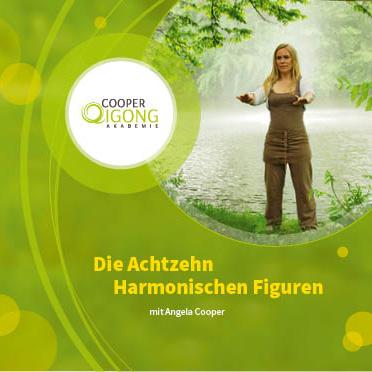 Cover: Die 18 Harmonischen Figuren