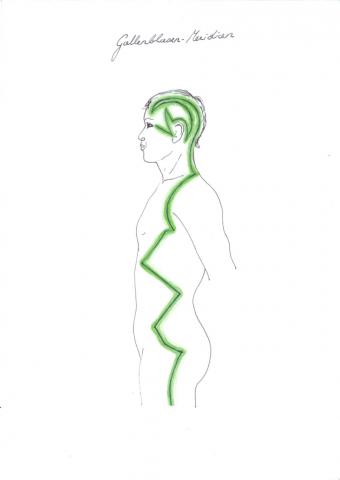 Der Gallenblasen-Meridian zieht sich über die Seite des Körpers.